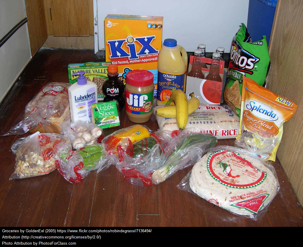Successful Teaching Grocery Shopping Unit Lesson