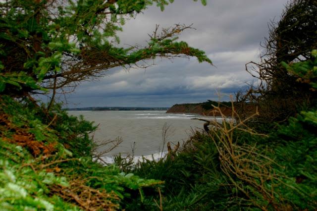 Three Fathom Harbour,  Terminal Cliffs, N.S. photo by Minaz Jantz