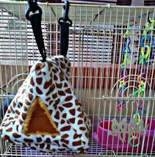 cage pouch sugar glider