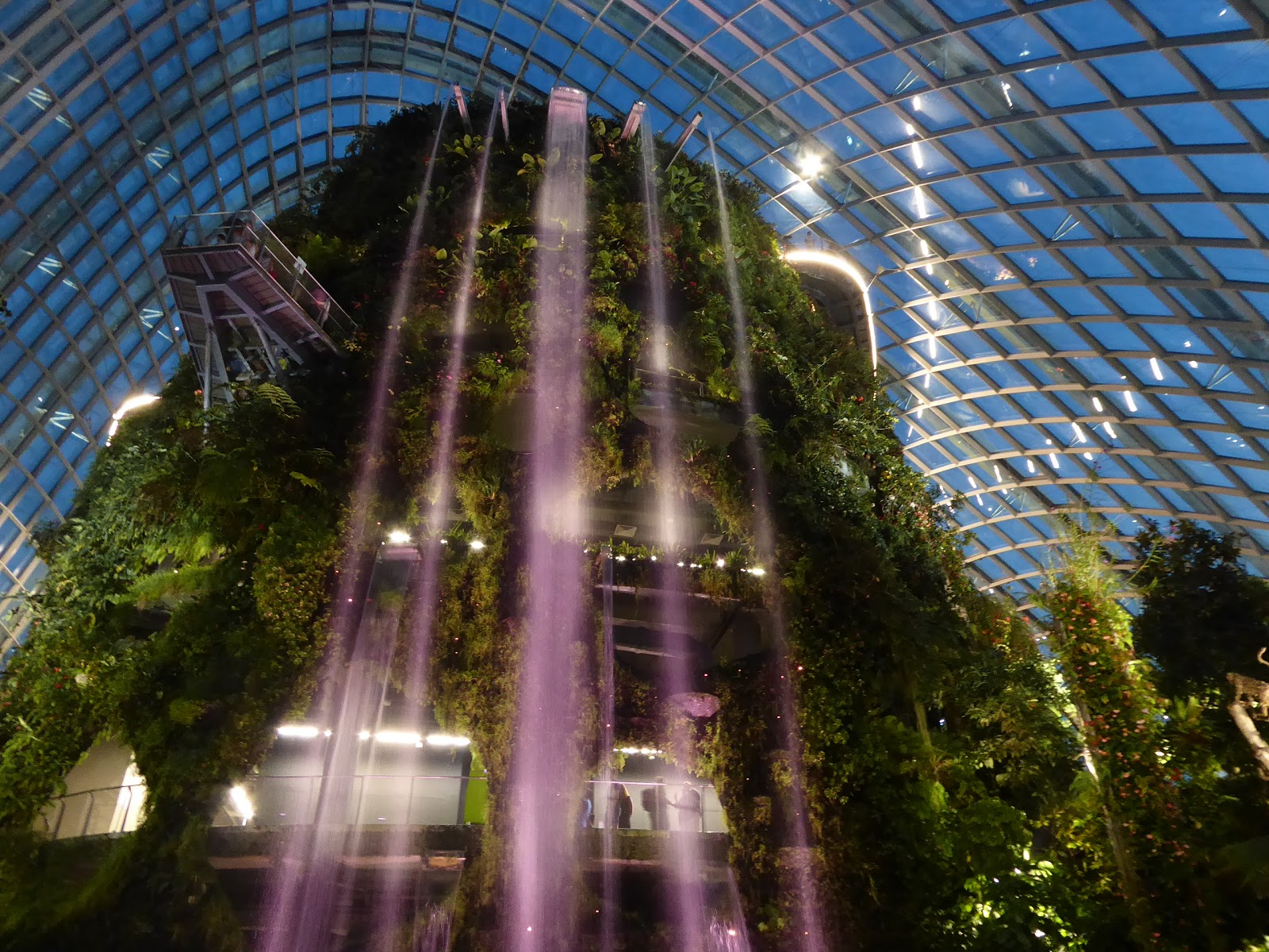 Cloud Forest in the Evening at Gardens by the Bay | All About Singapore