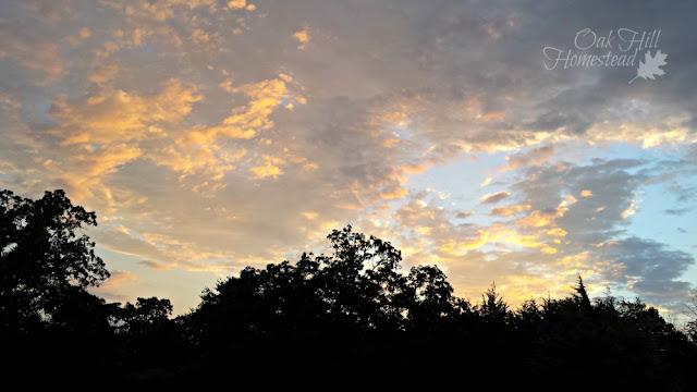 Sunrise at Oak Hill Homestead