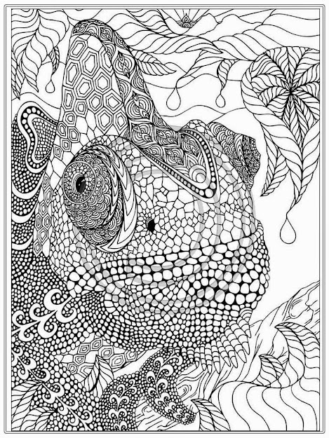 Advanced Coloring Pages Chameleon