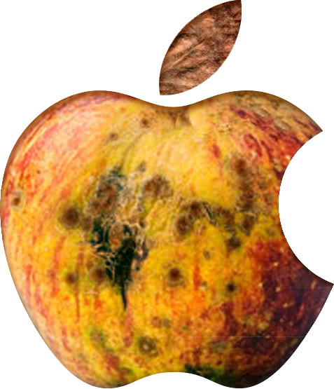 Image result for rotten apple iphone blogspot.com