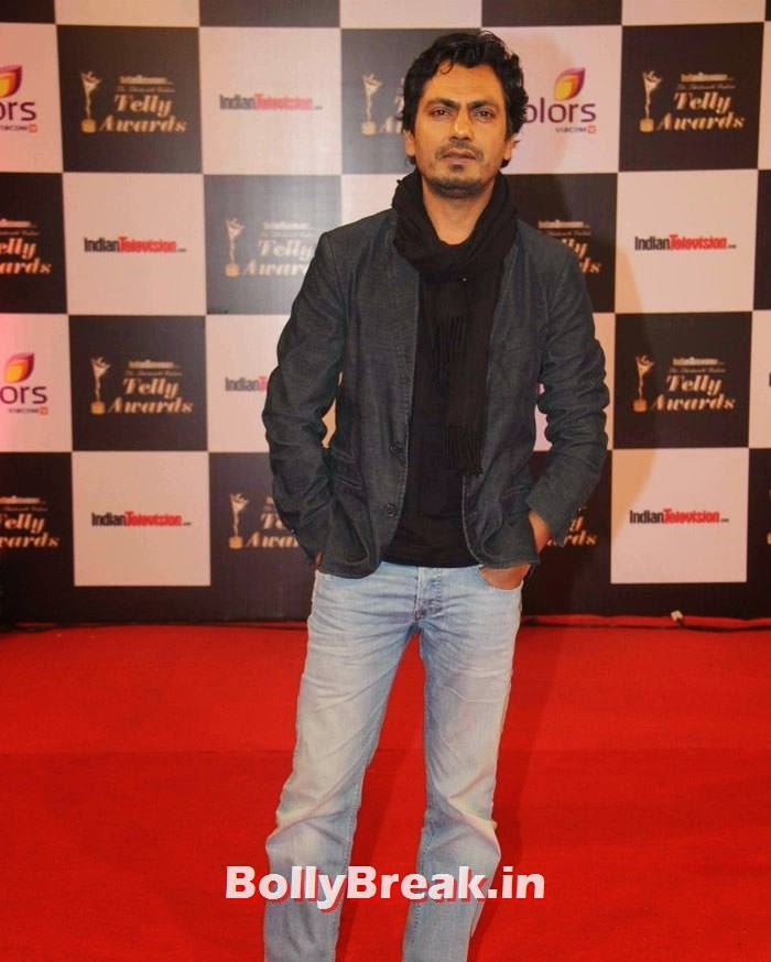 Nawazuddin Siddiqui, Pics on Red Carpet of 13th Indian Telly Awards 2014