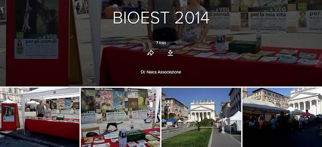 https://www.flickr.com/photos/associazionenaica/sets/72157701179592942