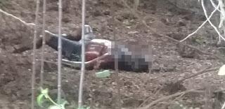 Cadáver em avançado estado de decomposição é encontrado no interior da PB