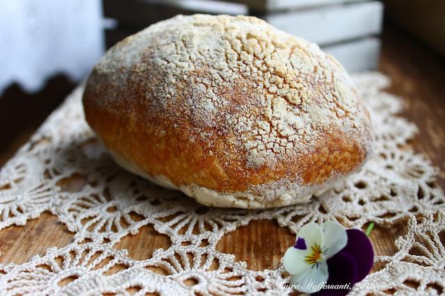 lievito madre pane buchi