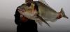 Η Τσιπούρα και το ψάρεμα της: Όλα τα μυστικά και video