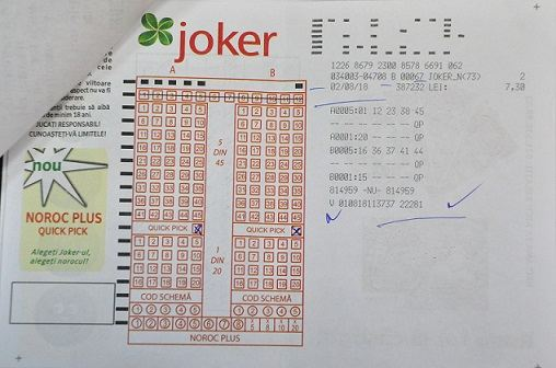 Bilet castigator categoria I joker
