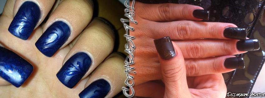 Plumage Artist Contrast Nail Nail Art Opaca Lucida