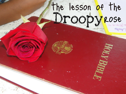 The Lesson of the Droopy Rose