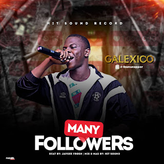 FAST DOWNLOAD: Galexico - Many Followers