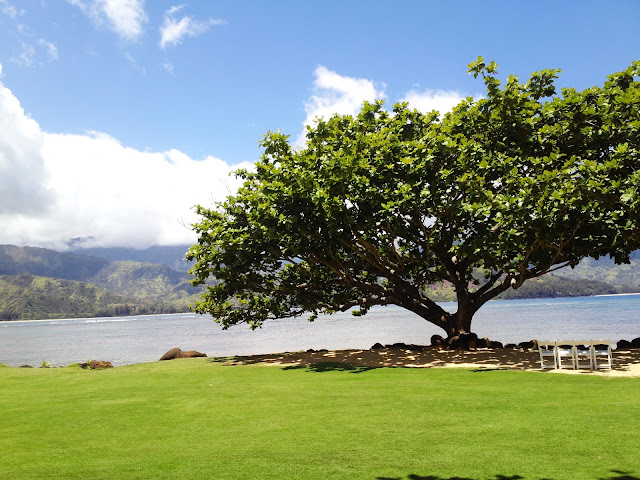 medleybyoanasinga.com-personal-blog-hawaii-vacation-kauai-island-st-regis-princeville-resort-22