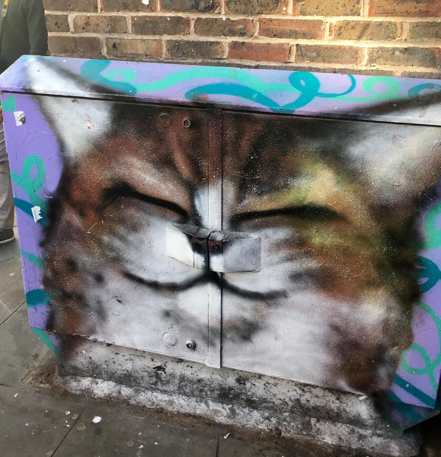 Cat Junction Box