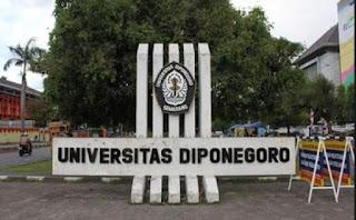 Pengumuman SNMPTN dan SBMPTN UNIVERSITAS DIPONEGORO 2019/2020