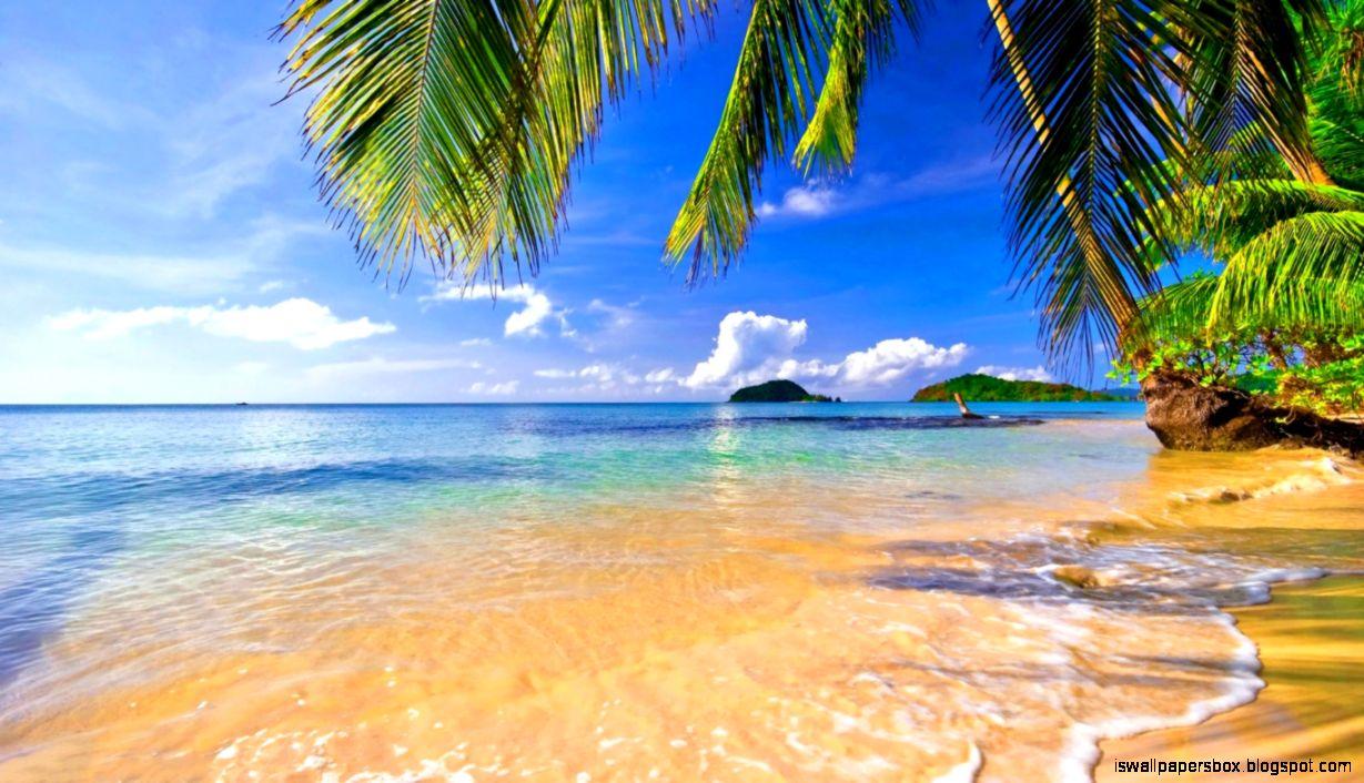 Tropical Beach Hd Wallpaper: Nature Wallpaper Tropical Beach Hd Wallpapers