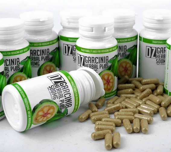 DZ Garcinia Herbal Plus Body Slimming Kurus Badan Langsing ...