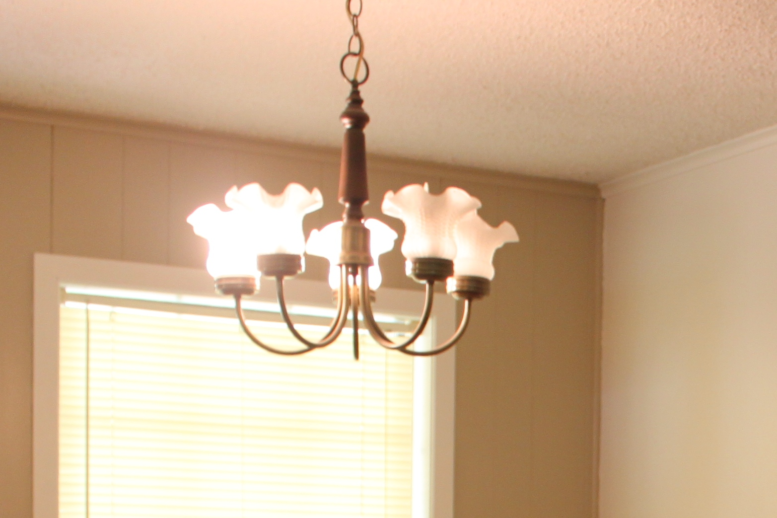 The b farm candle chandelier with glass teacups it wasnt anything pretty to look at with its antique brass and frilly glass globes so down it came and got replaced by a far cooler light arubaitofo Choice Image