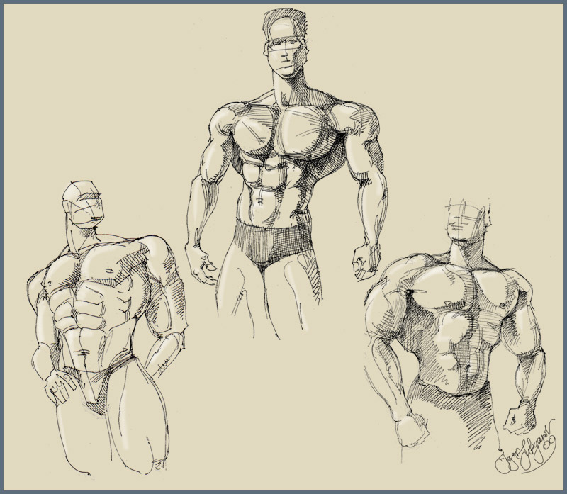 How To Draw Male Body Types