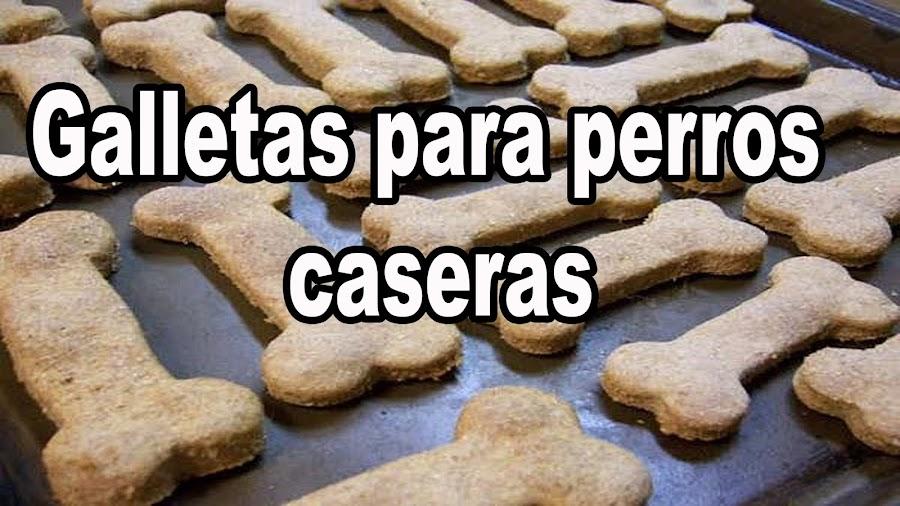 galletas caseras para perros