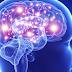 Las 6 vitaminas y minerales que mejoran tu cerebro
