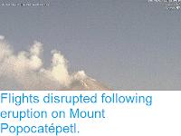 https://sciencythoughts.blogspot.com/2015/02/flights-disrupted-following-eruption-on.html