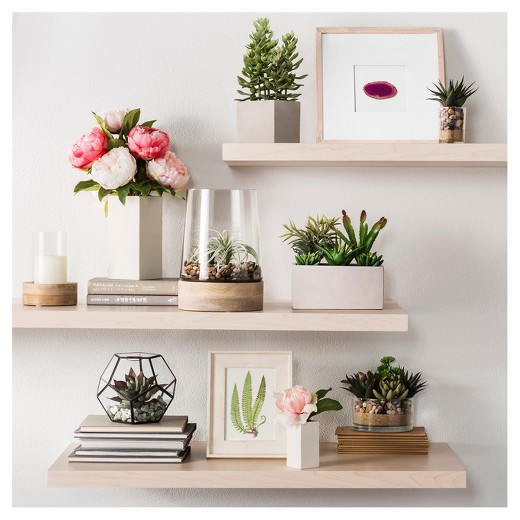 Decorating with Flowers and Plants