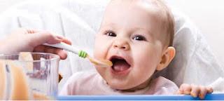 Bebekler İçin Sebze Püresi Tarifi