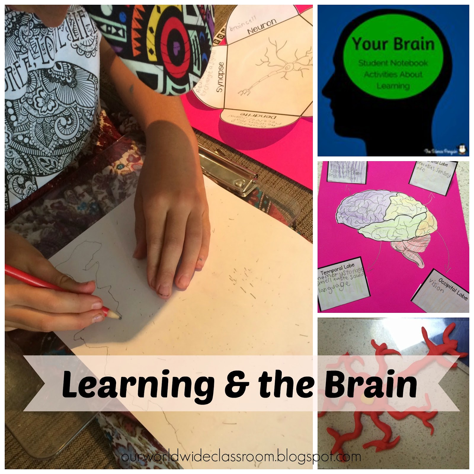 learning and the brain activities for kids