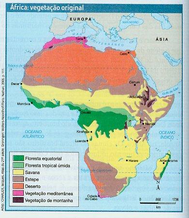 Continente Africano Vegetação do Continete Africano