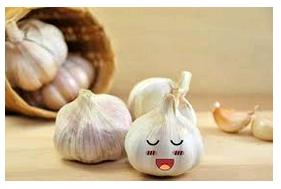 Manfaat Bawang Putih Untuk Anak Bayi