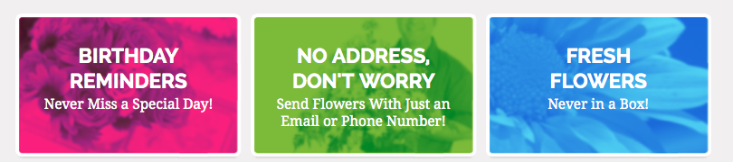 Pocket Flowers APP to Send Flowers to Anyone Anywhere Anytime Plus DISCOUNT CODE by BeckyCharms