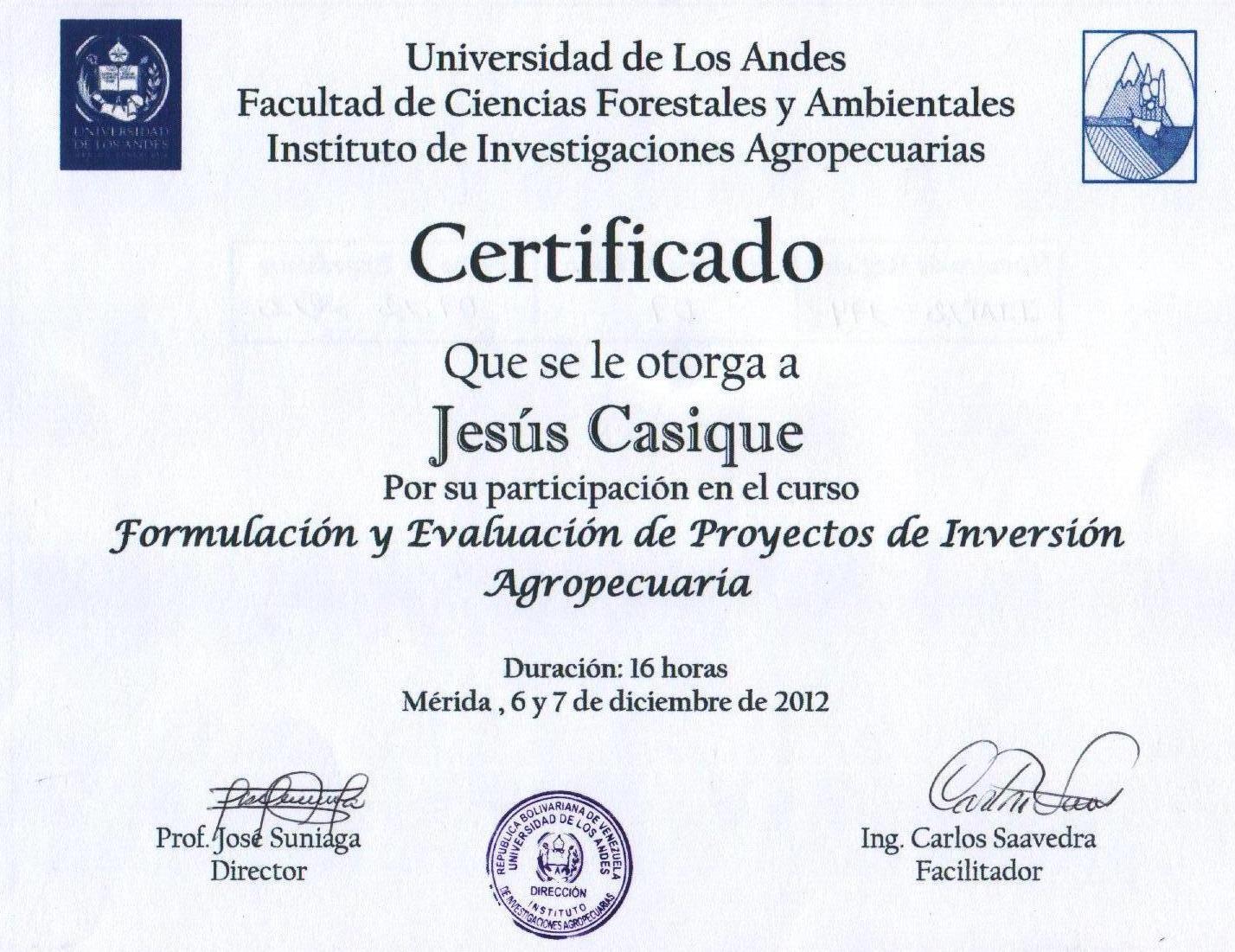 Excepcional Currículum Vitae Certificado Pmp Patrón - Ejemplo De ...