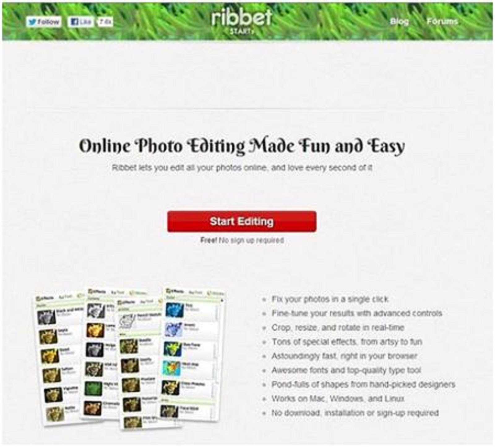 RIBBET - PICTURE EDITOR