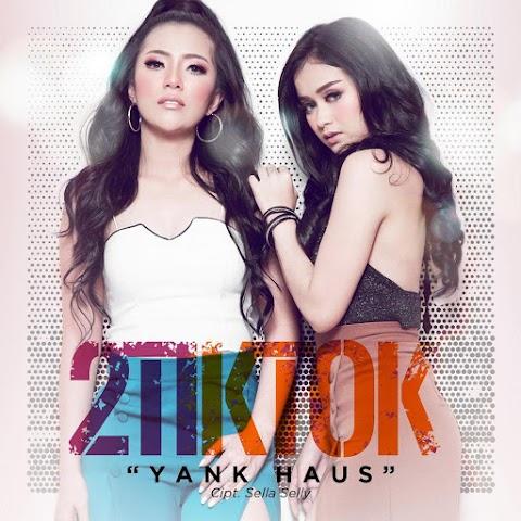 2TikTok - Yank Haus MP3