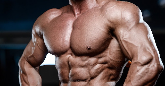 افضل تمارين لتضخيم عضلة البنش أو الصدر فى اقل فترة