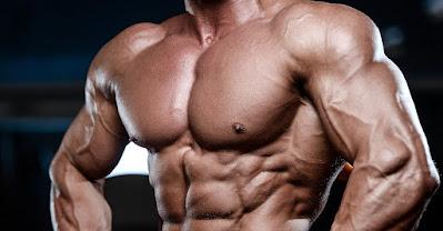 تمارين لتضخيم عضلة البنش أو الصدر