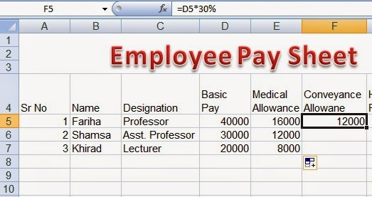 Employee Pay sheet Formulas in Microsoft Excel ~ Perfect Computer Notes - creating formulas in excel