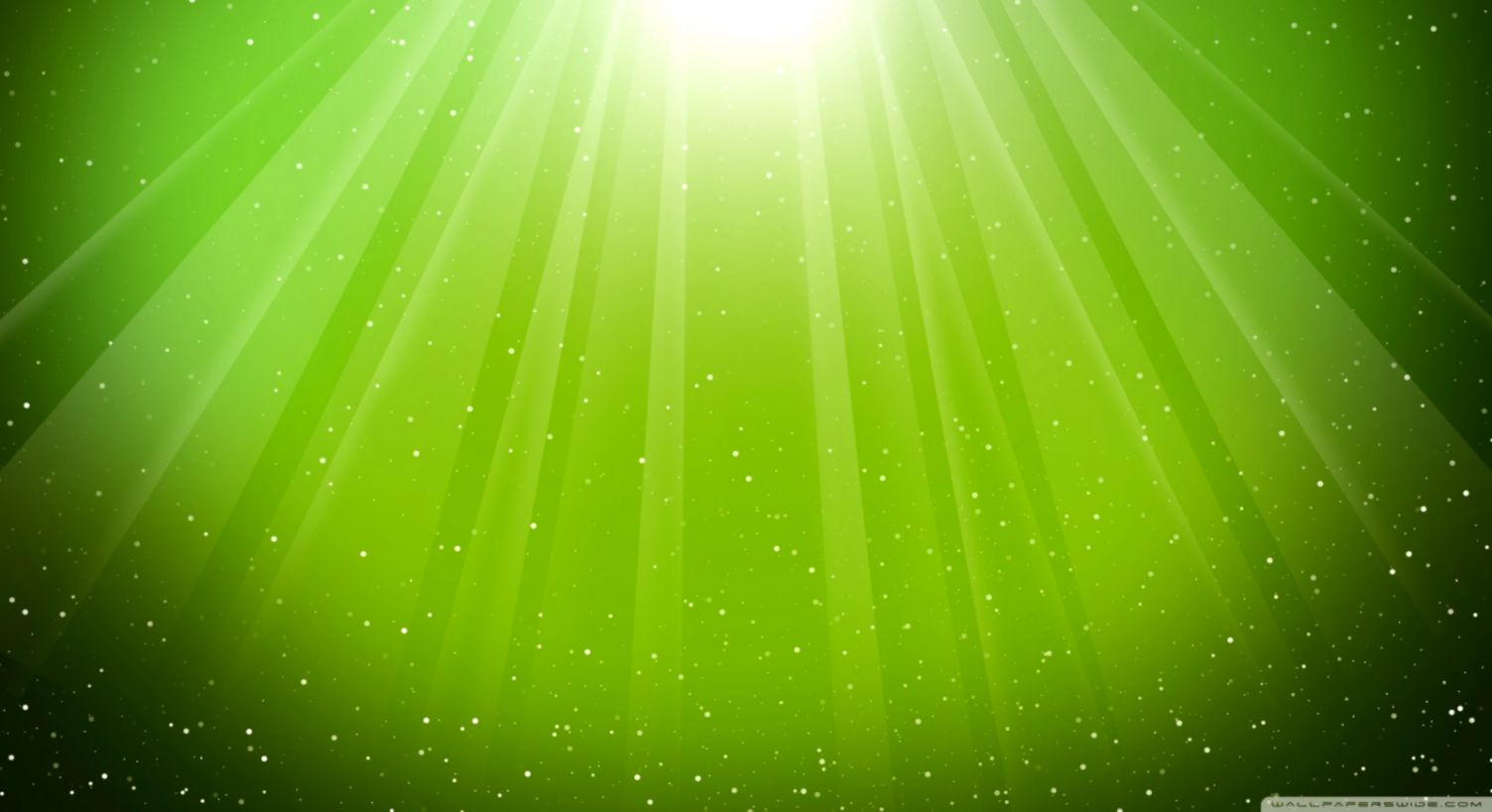 Lime Green Wallpaper Eazy Wallpapers