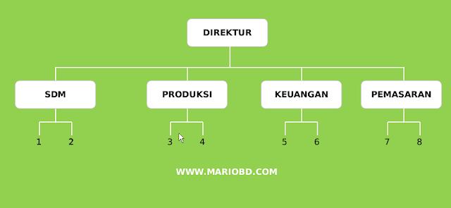 struktur organisasi garis atau line