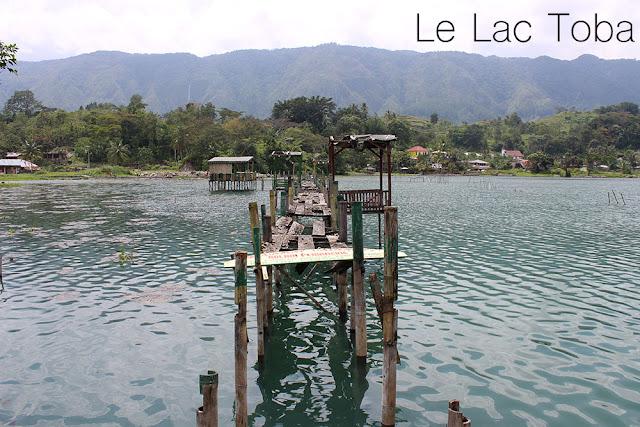 http://cherryvegzombie.blogspot.fr/2014/01/le-lac-toba-et-lile-de-samosir.html