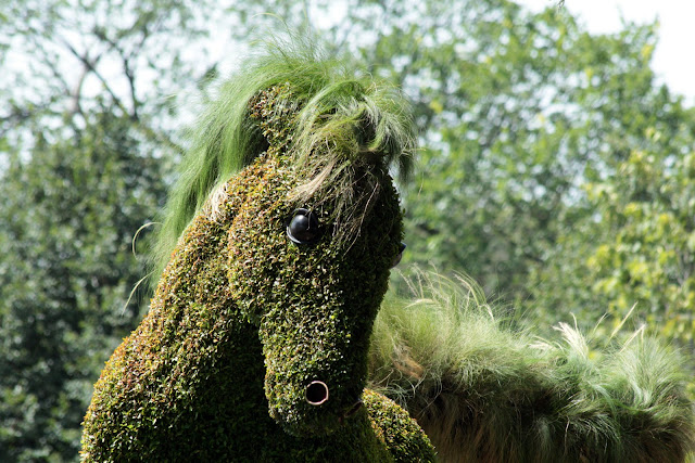 Horse topiary at Mosaiculture, Hull, Quebec