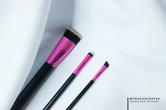 REVIEW: Lamica Beauty Brushes!