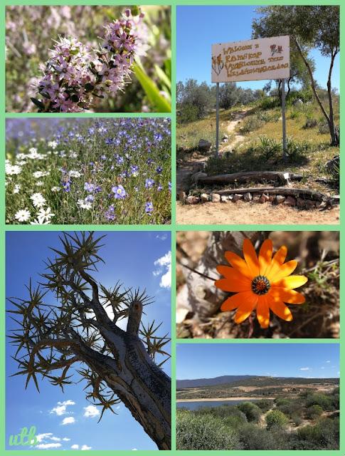 ramskop-nature-reserve