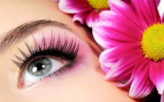 Eye Makeup With Flowers HQ Wallpapers