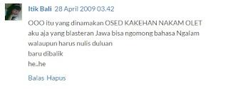 Blogger Cewek