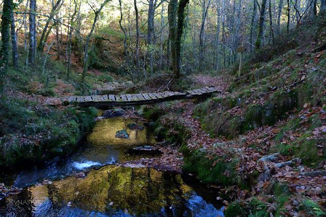 Puente sobre el Río Ahío o Bobia - Los Oscos - Asturias