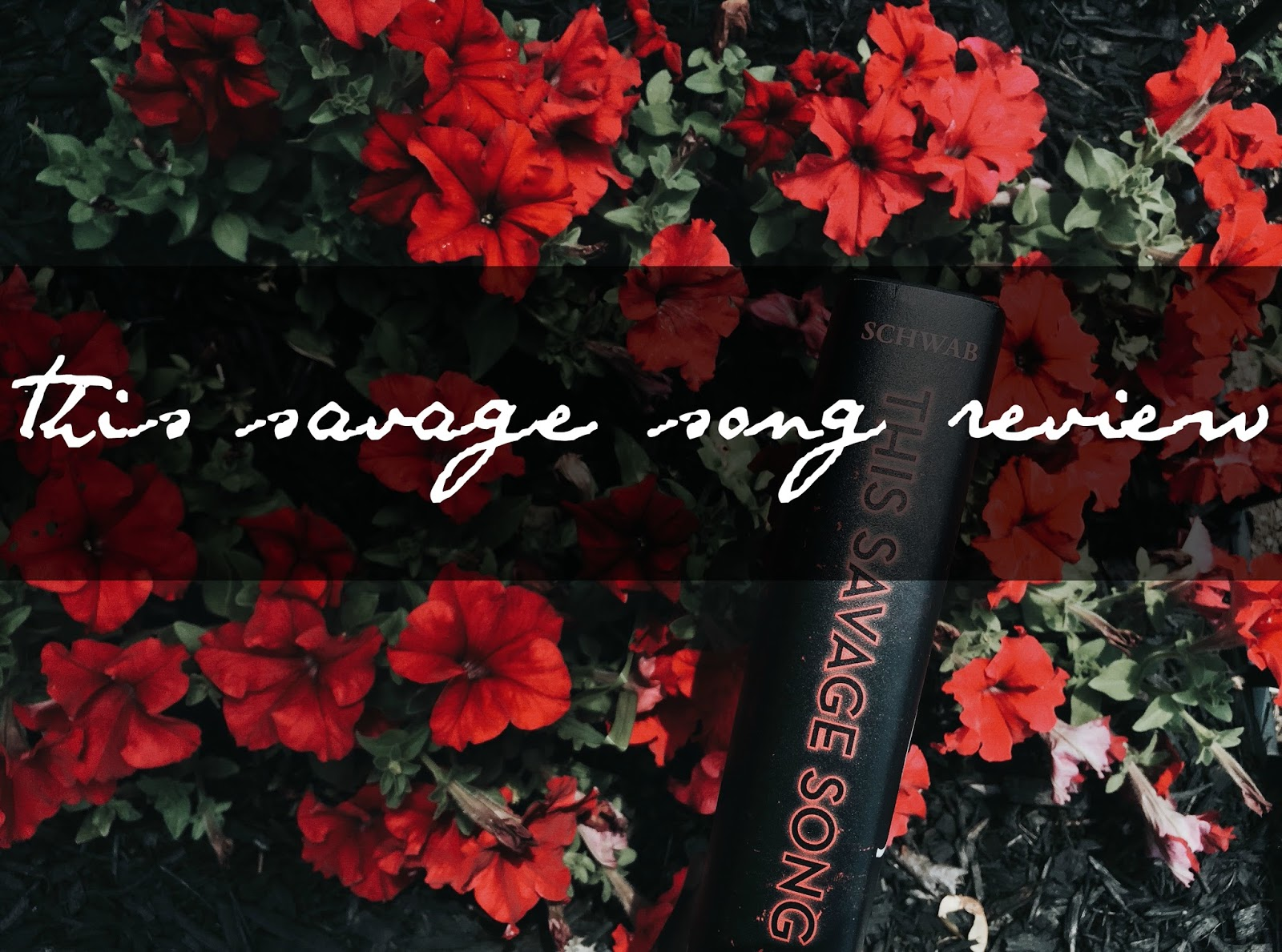 Bookvibes Review This Savage Song By Victoria Schwab