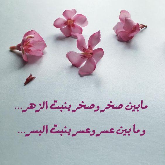 مابين صخر وصخر ينبت الزهر .. ومابين عسر وعسر ينبت اليسر