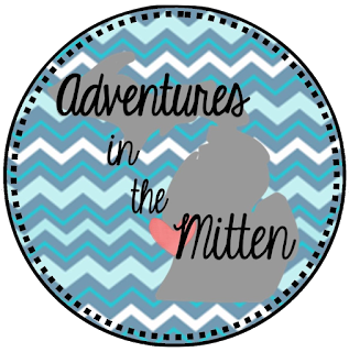 http://teachingadventuresinthemitten.blogspot.com/2016/06/summer-book-stash-blog-hop-character.html